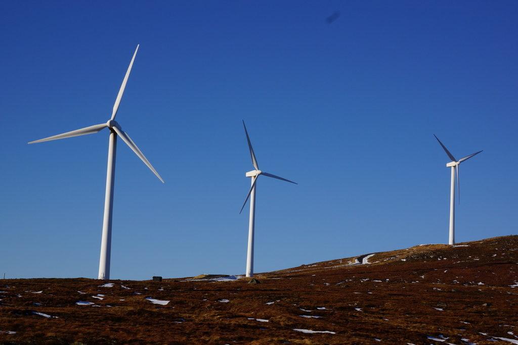 Mehuken vindkraftverk Foto: UngEnergi