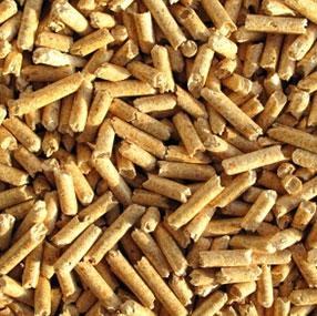 Bilde av pellets. Fotografi.