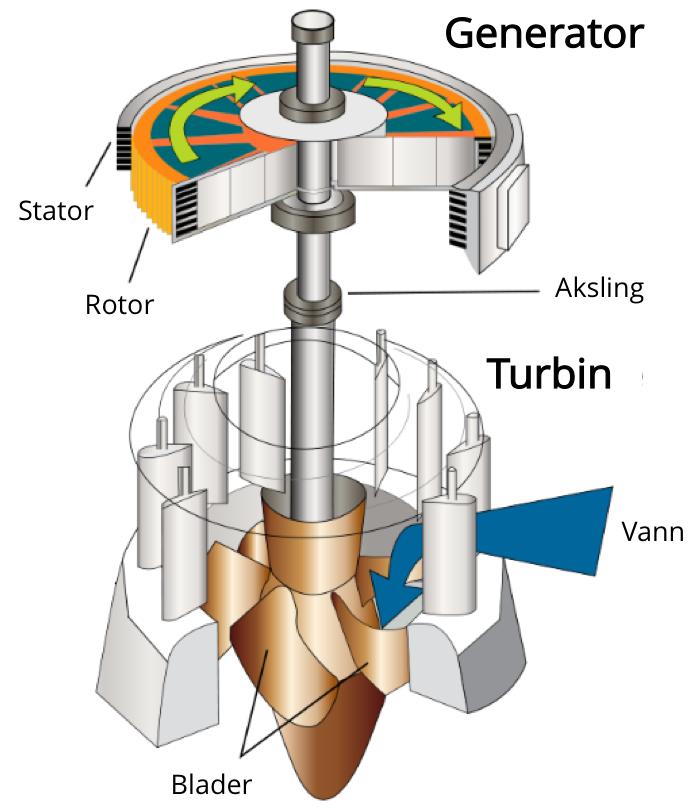 De ulike delene av en generator. Kilde: Wikimedia Commons